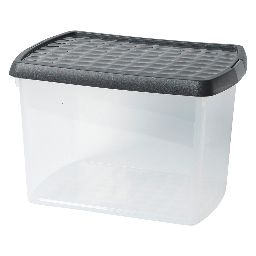 Business Premium Storage Clip Box with Lid 21.5 Litre Clear (Pack of 1)